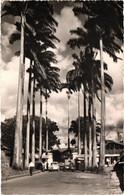 Martinique - Fort-de-france - Entrée De La Compagnie Générale Transatlantique - Fort De France