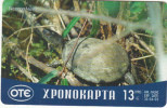 GREECE - Turtle, OTE Prepaid Card 13 Euro, 04/02, Used - Tartarughe