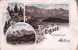 Deutschland - Gruss Aus EIBSEE - Edelweiss - Litho 1902 - Garmisch-Partenkirchen