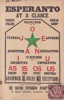 ESPERANTO AT A CLANCE, THE BRITISH ESPERANTO ASSOCIATION. CARTE POSTALE CIRCULEE AN 1922 HOLLOWAY A ARGENTINE.- LILHU - Esperanto