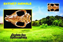 Vignettes De Fantaisie, Extinct Animals , Sparassodonta, Mayulestes Ferox - Etichette Di Fantasia