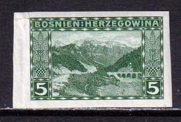BOSNIA AND HERZEGOVINA  -  1906 5h Imperf Hinged Mint - Bosnia Herzegovina