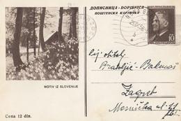 Slovenia Yugoslavia Illustrated Stationery Motiv Iz Slovenije 1956 - Slovenië