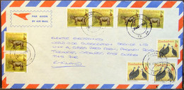 Zimbabwe - Multifranking Cover To England 1991 Rhinoceros Chicken - Rhinoceros