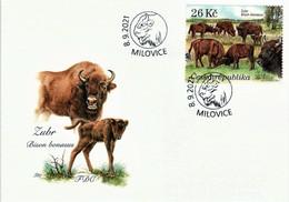 Czech Republic - European Bisons (Bison Bonasus), FDC, 2021 - Selvaggina