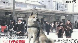 TELECARTE ETRANGERE.....BEAU CHIEN - Cani
