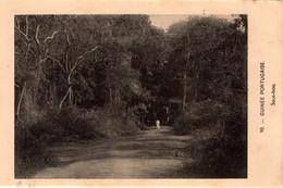 GUINÉ BISSAU - Sous-bois - Guinea-Bissau