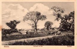 GUINÉ BISSAU - Estrada De Bór - Guinea-Bissau