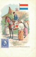 H1009 - La Poste Aux Indes Néerlandaises - Timbres (représentations)