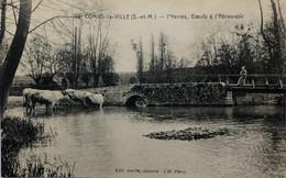 COMBS-la- VILLE.—I'Yerres,Bœufs à I'Abreuvoir - Combs La Ville
