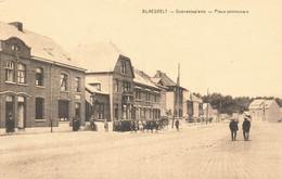 BLAESVELT - Gemeenteplaats - Place Communale - Willebroek