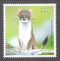 Estonian Fauna – The Stoat Estonia 2021 MNH Stamp  Mi 1020 - Otros