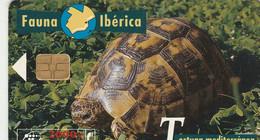 TELECARTE ETRANGERE....TORTUE. - Tartarughe