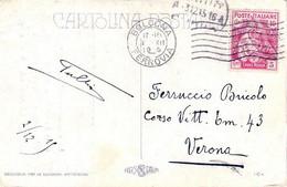 1915 CROCE ROSSA C.10 (102) Isolato Su Cartolina Propagandistica Bologna (2.12) - Marcophilia