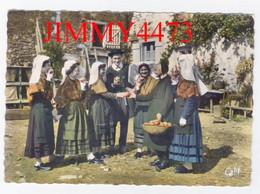 CPM Dentelées - LE LIMOUSIN - Chez Mémé Angèle, Lous Vel'hadours De Sen Junio 87 Haute Vienne - N°53 - Edit. GABY ARTAUD - Autres Communes
