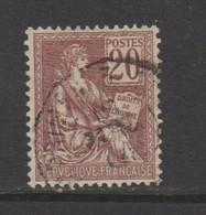 Mouchon: 20c Brun Lilas N°113 - 1900-02 Mouchon