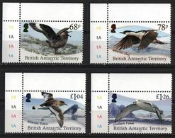 British Antarctic Territory (BAT)  2020.  Antarctic Birds. Fauna  MNH - Nuovi