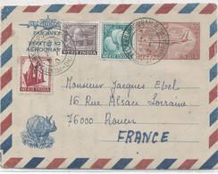 INDES  - RHINOCEROS - AEROGRAMME Pour LA FRANCE : C à D 8-1-79 - Covers & Documents