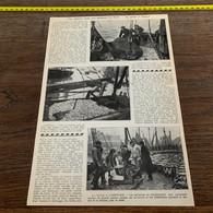 1930 PATI1 La Pèche à L Esprot à Zeebrugge Ostende - Sin Clasificación