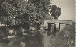 Courseulles-sur-Mer - Pont De Graye Sur La Seulles  - (P) - Courseulles-sur-Mer