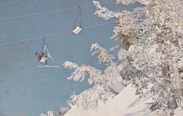 USA  - Postcard Used 1983 - Mammoth Mountain Ski Area ,resort ,ski Lift -  2/scans - Altri