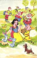Walt Disney Blanche Neige Et Les 7 Nains Lapins RV - Other