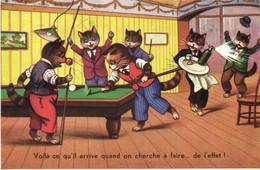 Illustrateur Chats Voilà Ce Qui Arrive Quand On Veut Faire ...de L'effet ! RV Beau Timbre 1F20 - Cats