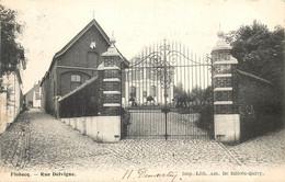 Belgique - Flobecq - Rue Delvigne - Flobecq - Vloesberg