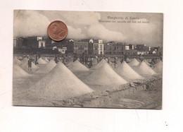 P1454 Puglia MARGHERITA DI SAVOIA 1923 Viaggiata Annullo Frazionario  Raccolta Sale - Altre Città