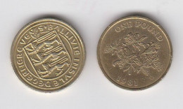 Guernsey One Pound Coin Circulated Dated 1981 - Guernsey