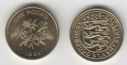 Guernsey One Pound Coin Uncirculated Dated 1981 - Guernsey