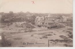 CPA (De Panne) - La Panne - Panorama - De Panne