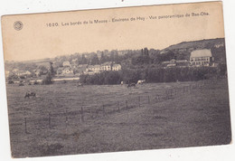 48801 =    Environs De Huy  Vue  Panoramique De  Bas  Oha - Huy