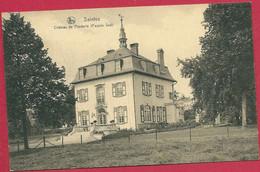 C.P. Saintes = Château  De  POEDERLE   (  Façade  Sud  ) - Tubize