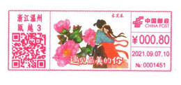 China Wenzhou Postage Machine Meter: Hibiscus Arborescens Flower; Meet The Most Beautiful You - Lettres & Documents