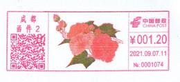 China Chengdu Postage Machine Meter FDC: Hibiscus Arborescens Flower - Lettres & Documents