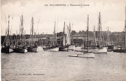 Douarnenez - Thoniers à L ' Ancre - Douarnenez