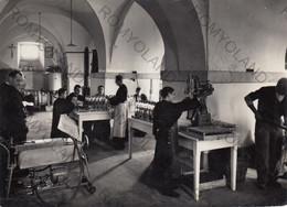 "CARTOLINA  FIRENZE,TOSCANA,SANTUARIO DI MONTESENARIO M.817,DISTILLERIA DEL LIQUORE ""GEMMA D""ABETO"",VIAGGIATA 1955 - Firenze (Florence)"