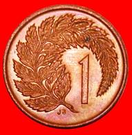 * SILVER FERN: NEW ZEALAND ★ 1 CENT 1988 MINT LUSTRE UNPUBLISHED! LOW START ★ NO RESERVE! - New Zealand