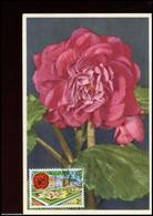 1502 - MK - Flora - Lochristi #2 - 1961-1970