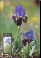 2357 - MK - Gentse Florali?n VIII - 1981-1990