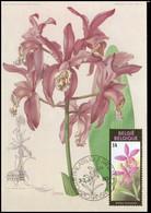 2358 - MK - Gentse Florali?n VIII - 1981-1990