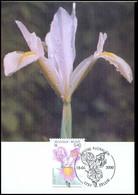 2903 - MK - Gentse Florali?n X #1 - 1991-2000