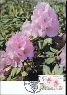2904 - MK - Gentse Florali?n X #1 - 1991-2000