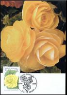 2905 - MK - Gentse Florali?n X #1 - 1991-2000