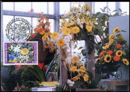 2935 - MK - Florali?n Van Henegouwen - 1991-2000