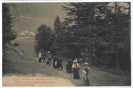 CAMPAN (65) - GRIPP - Sur Le Chemin Des Cascades - Ed. Labouche Frères, Toulouse - Campan