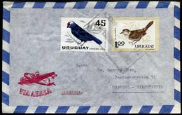 Uruguay - Cover To Hamburg, Germany - Uruguay