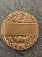 MEDAILLE EN BRONZE 1978 Signée PETIT Dans Sa Boïte / MINISTERE DE L'AGRICULTURE / 72 Grammes / 50 MM - Other