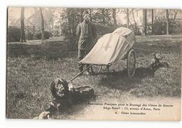 Attelage De Chien BRANCARDIER Association Française Pour Le Dressage Des Chiens De Guerre 6 ELD Paris - Guerra 1914-18